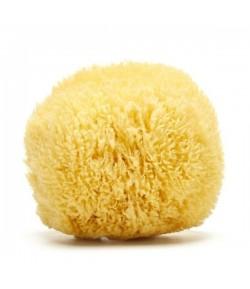 """GRASS Naturalna gąbka morska (rozjaśniana) rozmiar """"XL"""" 15 cm - 16,5 cm ZERO WASTE"""